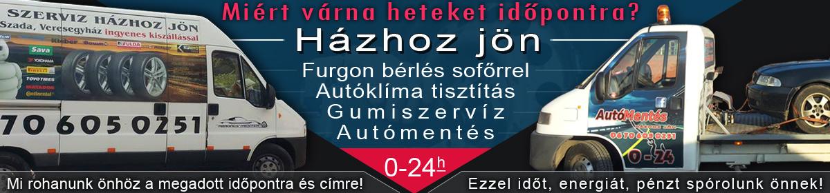 Gumiszerviz